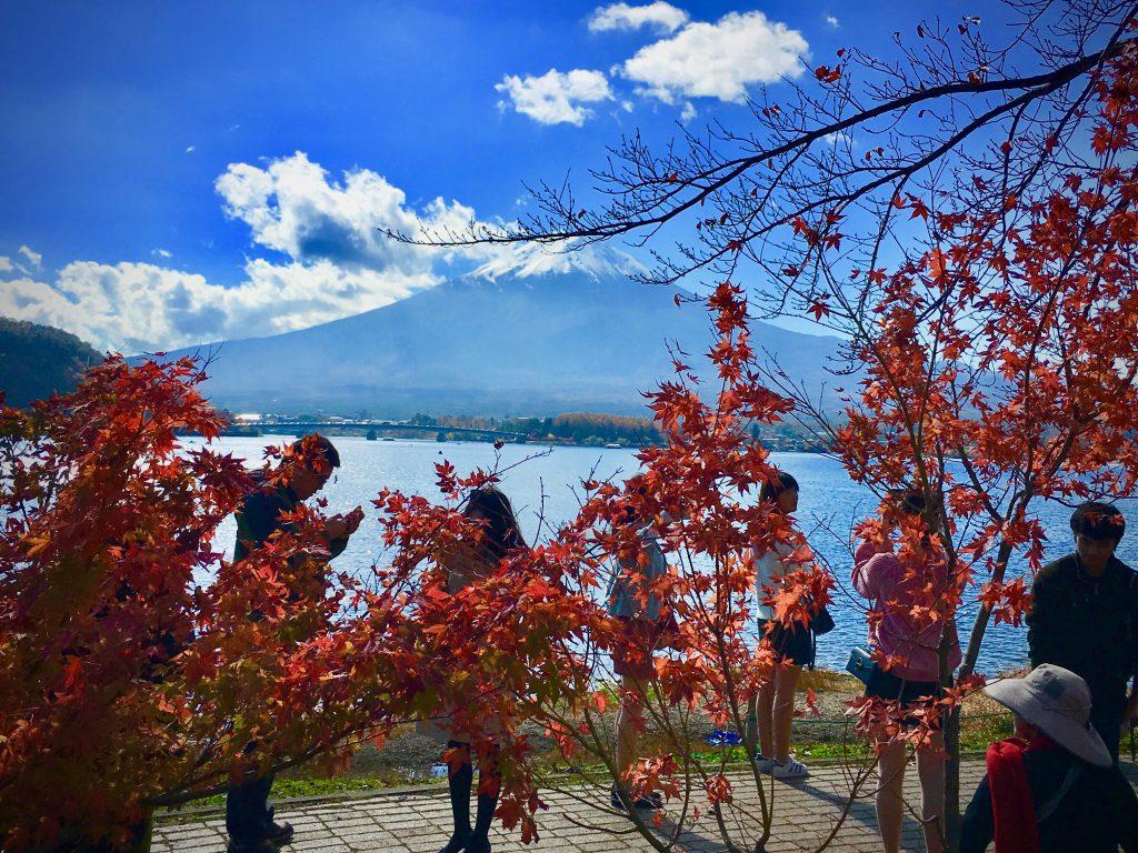 河口湖からの富士山の眺め